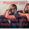 Proverbe gay