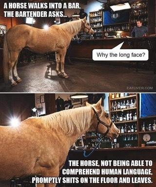 it's not a horse it juannnn - meme