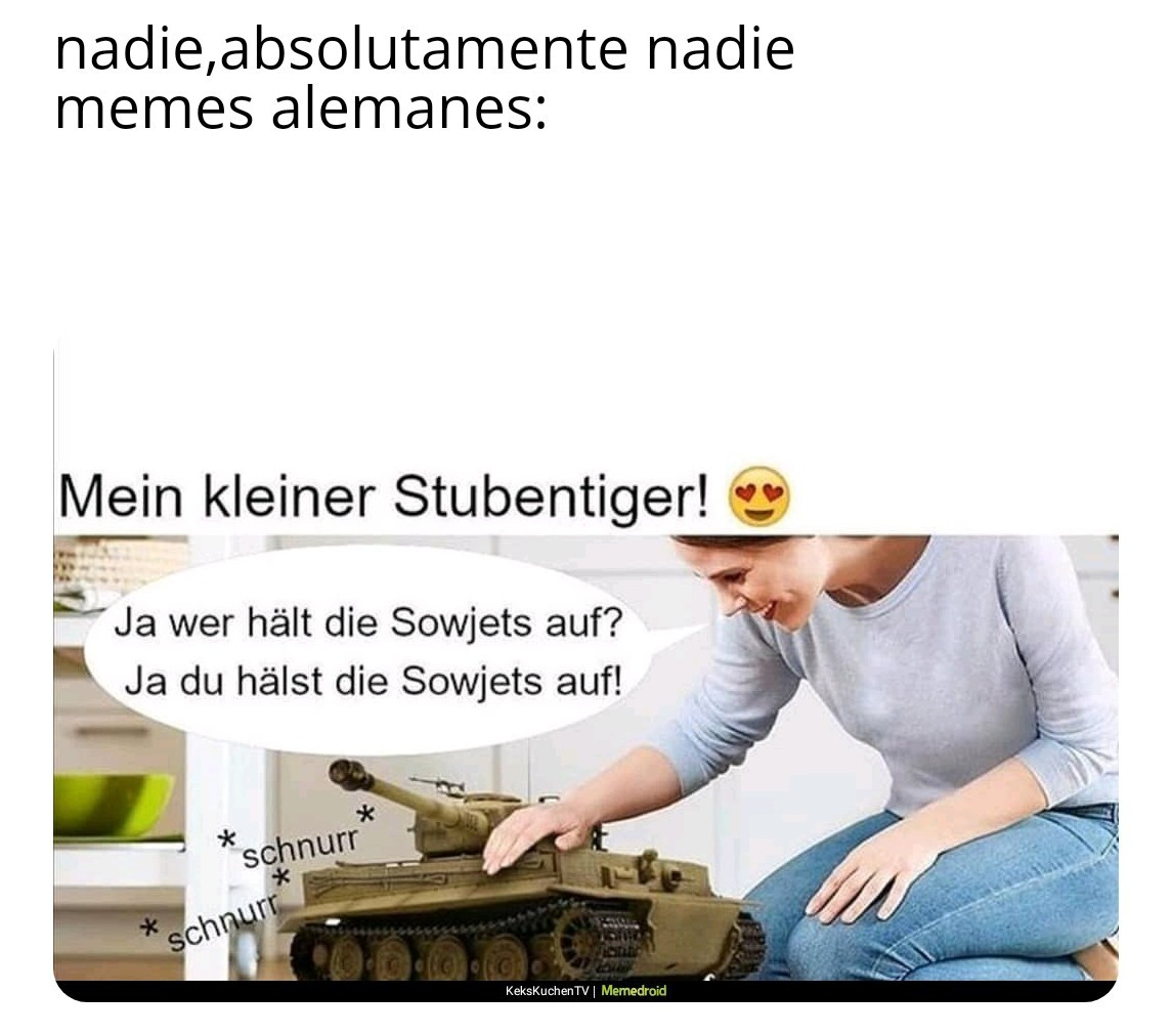 Sturmgewehr - meme