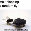bzzbzz