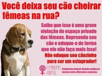 aonde vai parar o feminismo animal? - meme