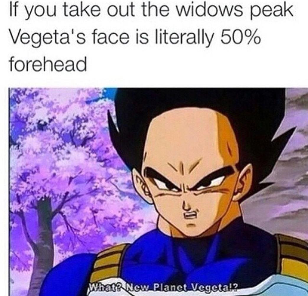 Vegeta hairline is non-existent - meme