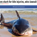 A guy sued a shark for taking a bite out of his leg..?
