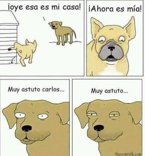 P*to Carlos
