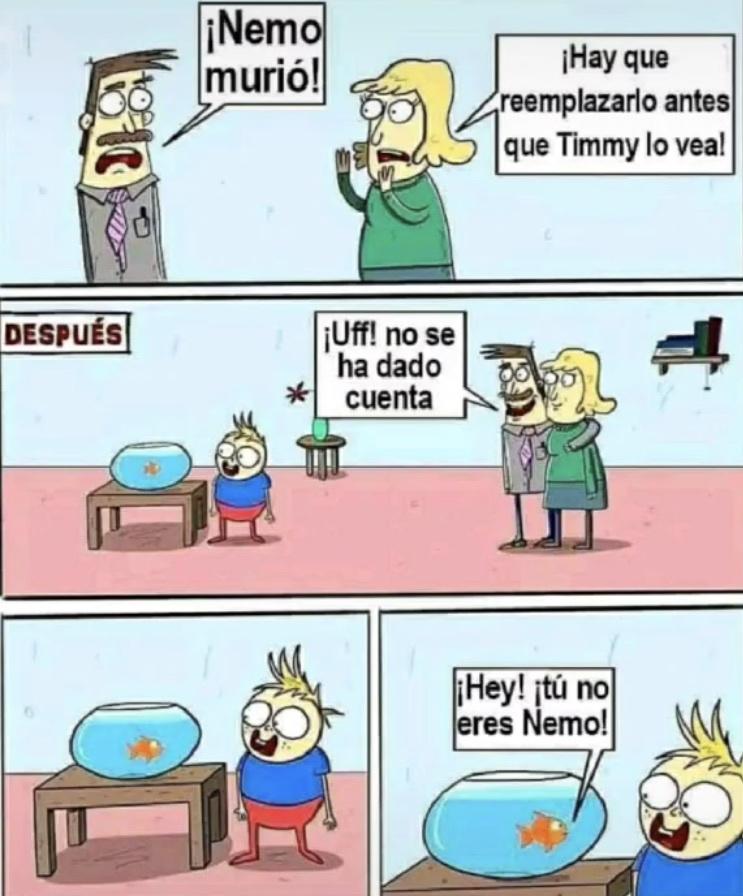 fin? - meme