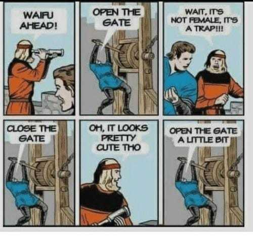"""""""Waifu droit devant!"""" """"Ouvrez le portail!"""" """"Attendez, c'est pas une fille, c'est un trap!"""" """"Fermez le portail!"""" """"Il est vraiment mignon n'empêche"""" """"ouvrez un peu le portail!"""" - meme"""