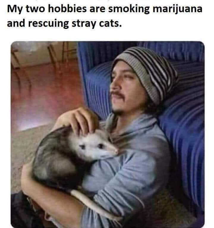 Number 1 reason i have never smoked - meme