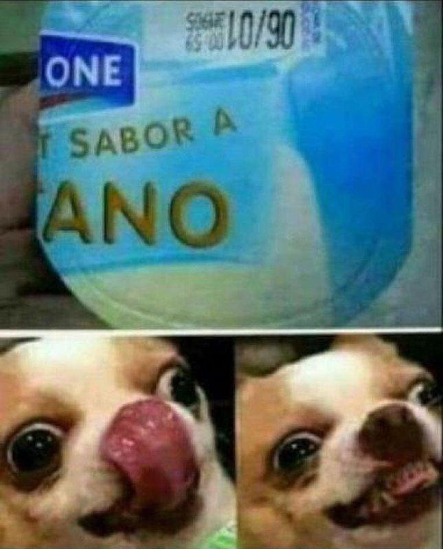 Poto - meme