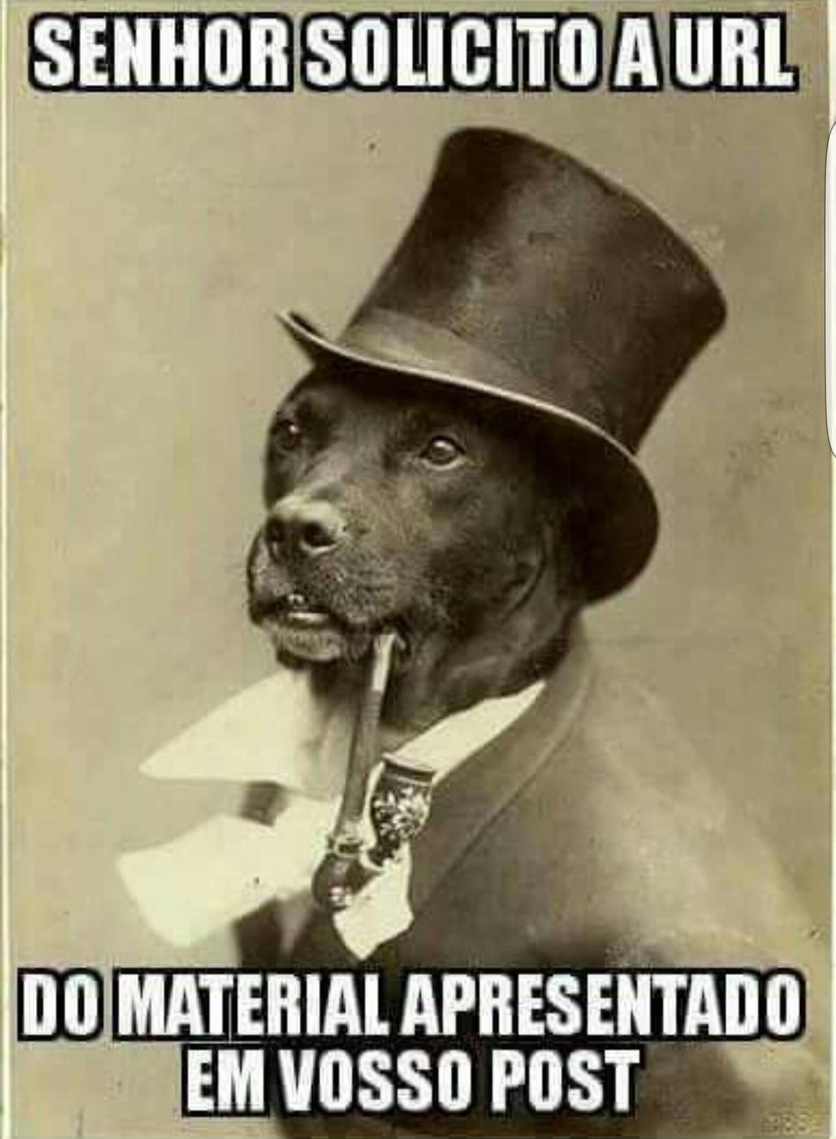Cachorro dos link - meme
