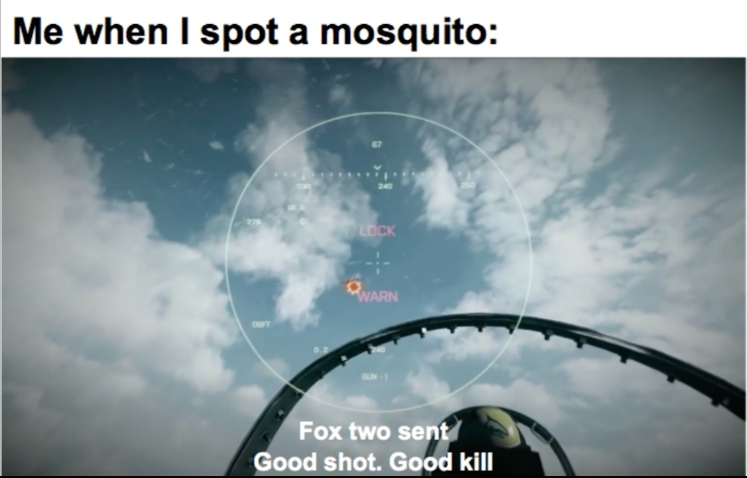 Mosquito are hostile - meme