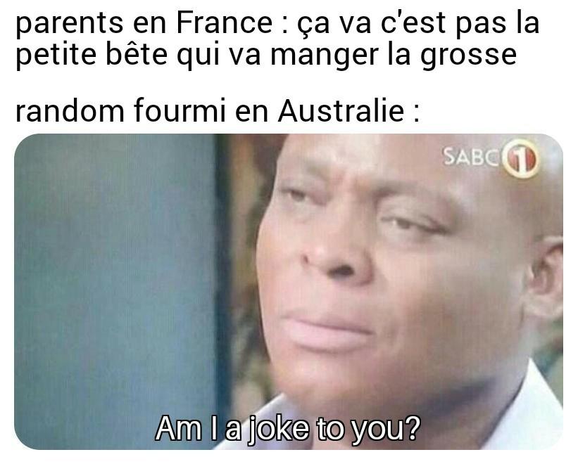 Oups - meme