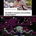Squids = octopuses/pi