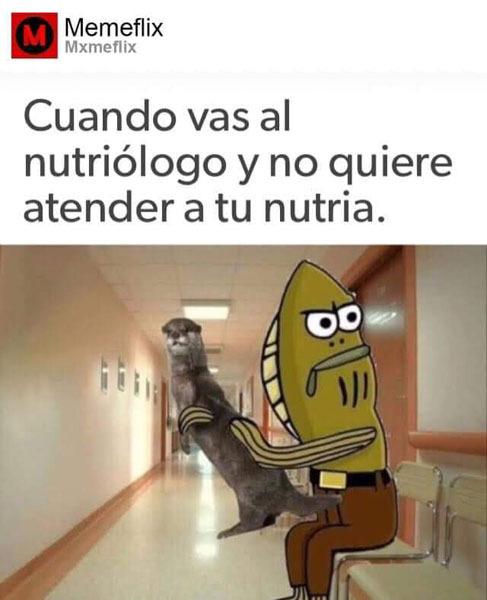 porque? - meme