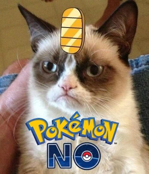 Après Pokemon Go... - meme