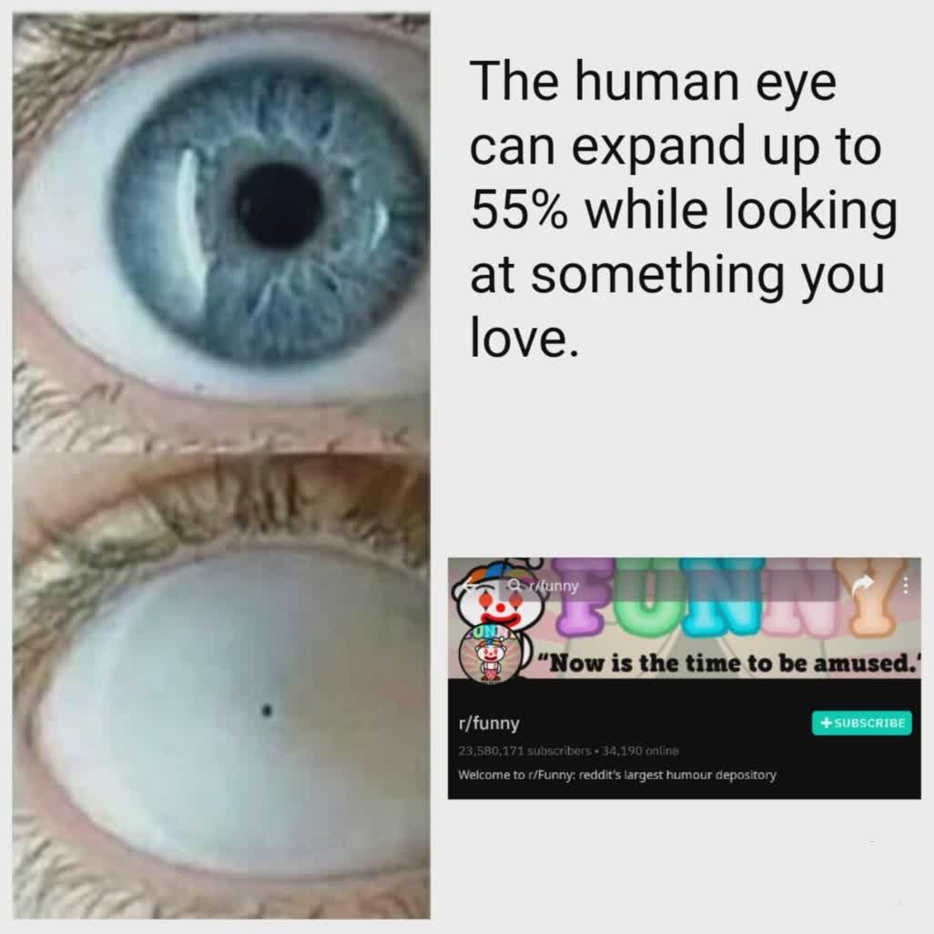 Reddit sucks - meme