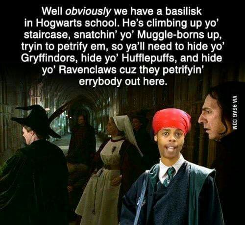 It's gonna slytherin your bed. - meme