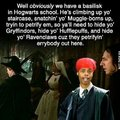 It's gonna slytherin your bed.
