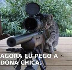 gatosniper - meme