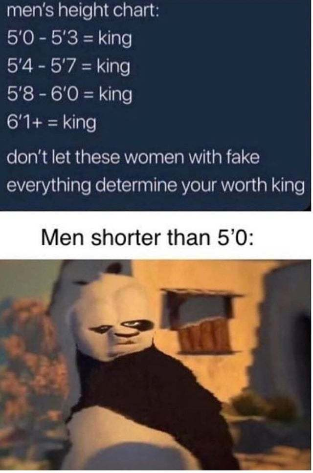 Men's height chart, don't let women with fake everything determine your worth king - meme