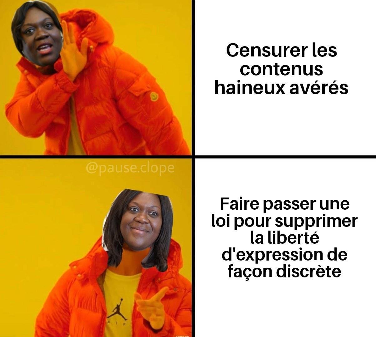 Coucou Mme Avia - meme