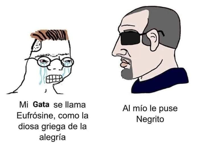 Pelusa - meme