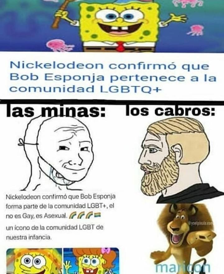 Bobes ponja - meme