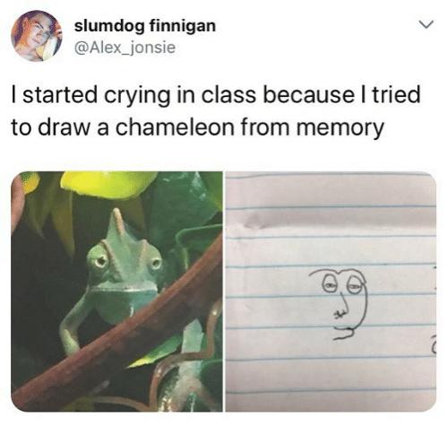 Chamelmelon - meme