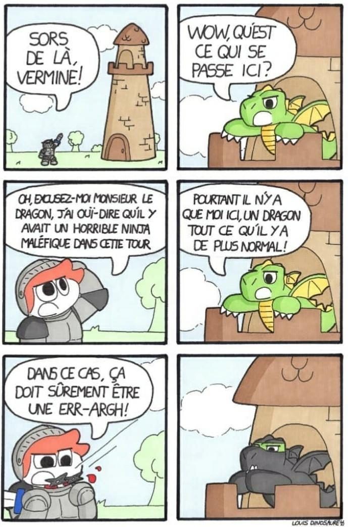 Ne sous estimé pas le Ninja-Dragon - meme