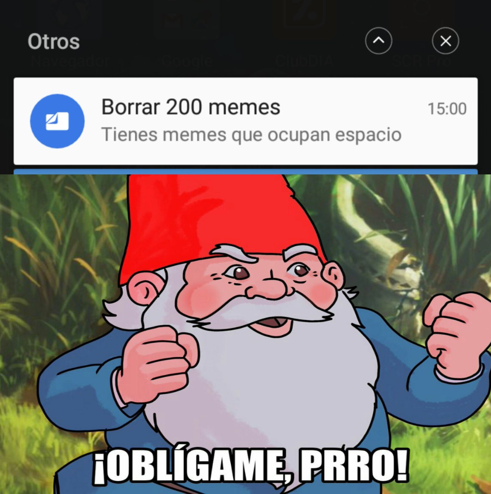 No te metas con mis Memes Google Files