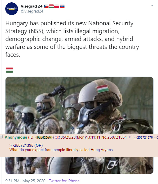 dongs in a hungary - meme