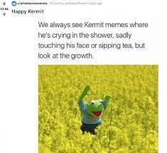 Elmo is Kermit's enemy, but elmo is happy for Kermit - meme