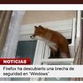 Firefox y Windows