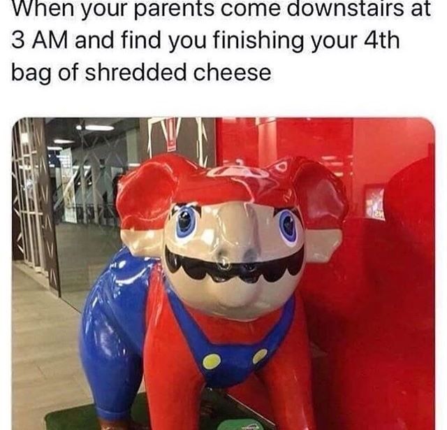 Why was the Mario koala created? Who said it was fine? - meme