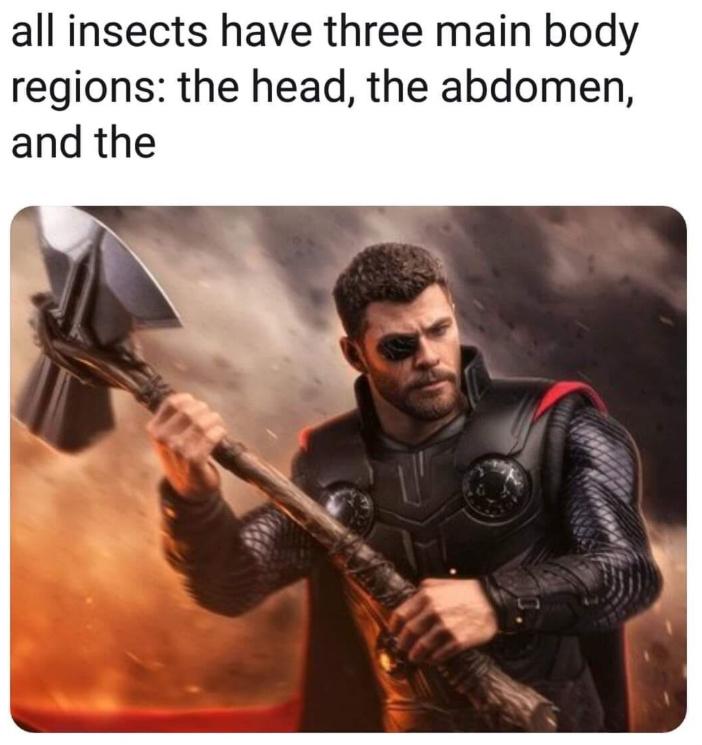 Stormbreaker - meme