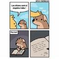 Pourtant les chiens sont intelligent