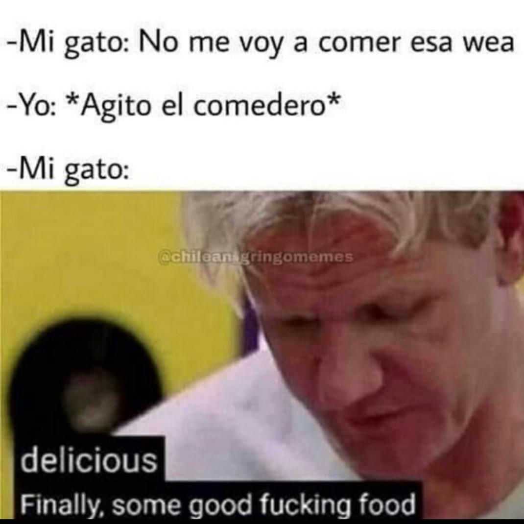 Delicias - meme