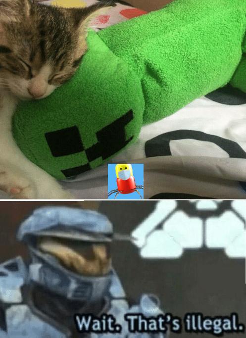 illegal - meme