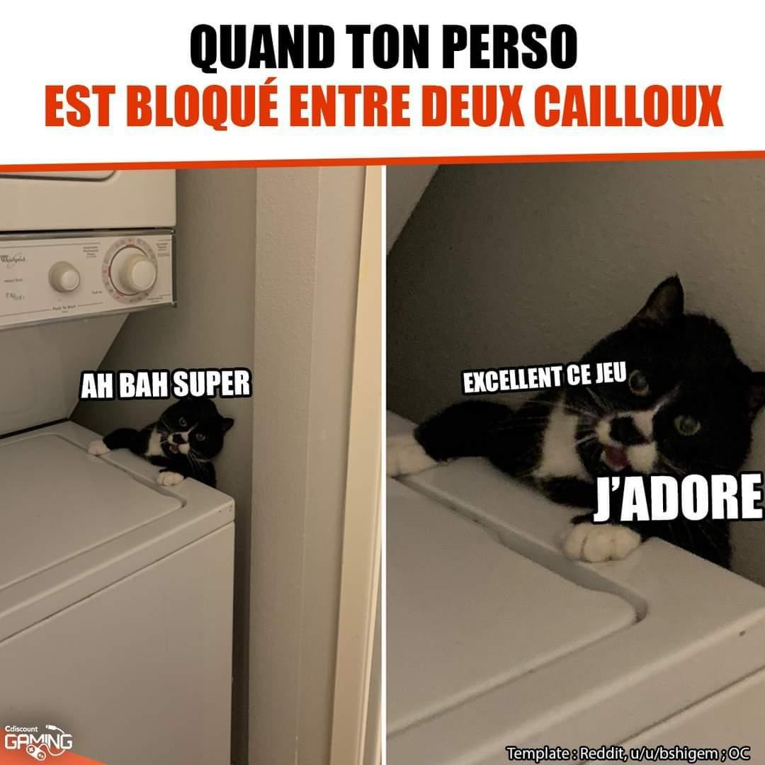 Bravo nils - meme