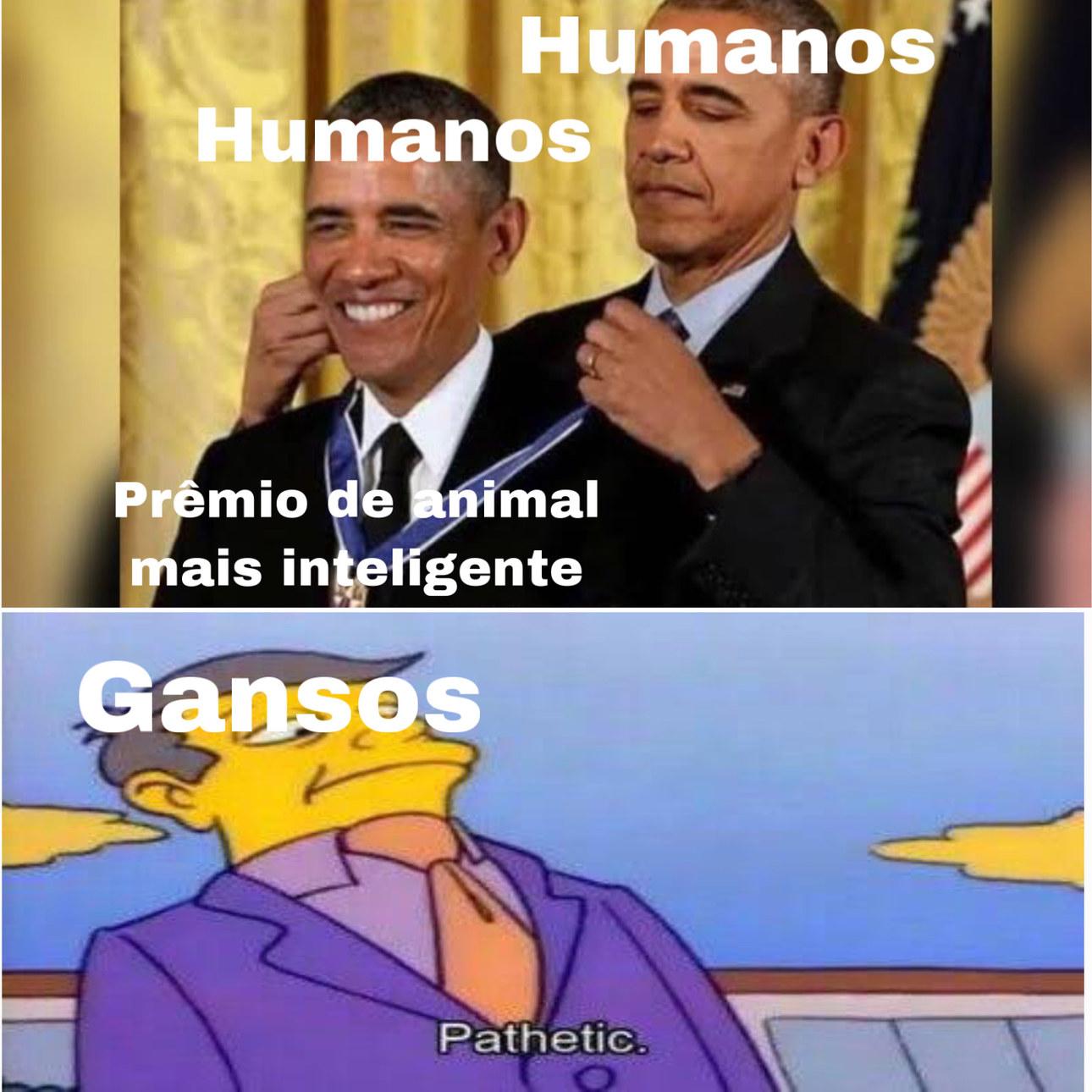 Ganso - meme