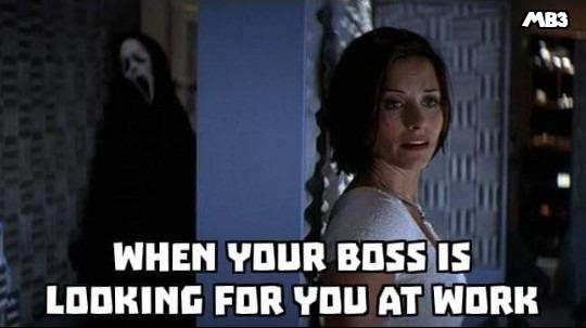 Boss Looking - meme