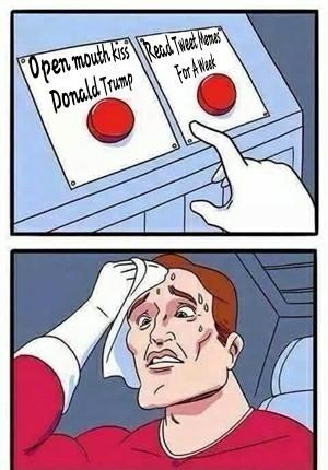 Tough choice indeed... - meme