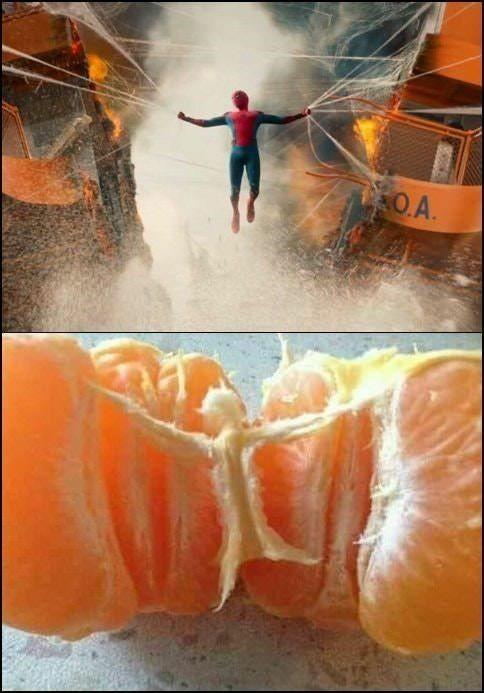 Tangerine Spiderman - meme
