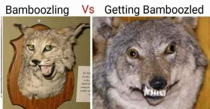 Grrrrr - meme