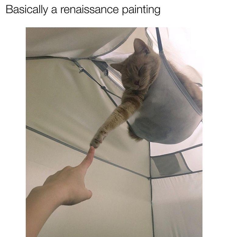 touch - meme