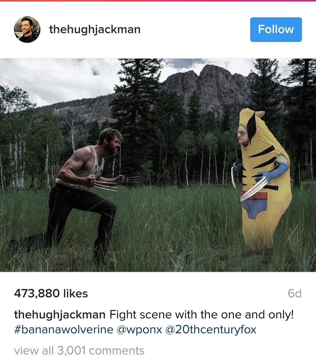 Banana wolverine - meme