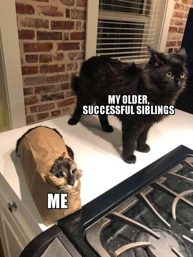Me vs my older successful siblings - meme