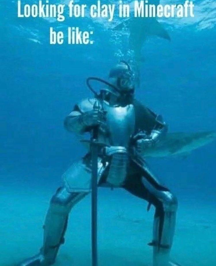 sea knight - meme