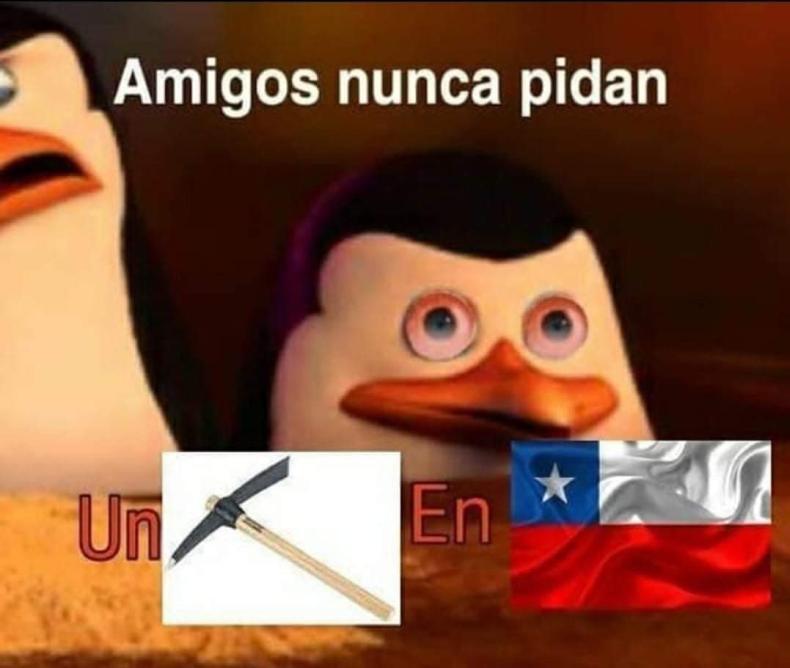 NO LO HAGA COMPA - meme