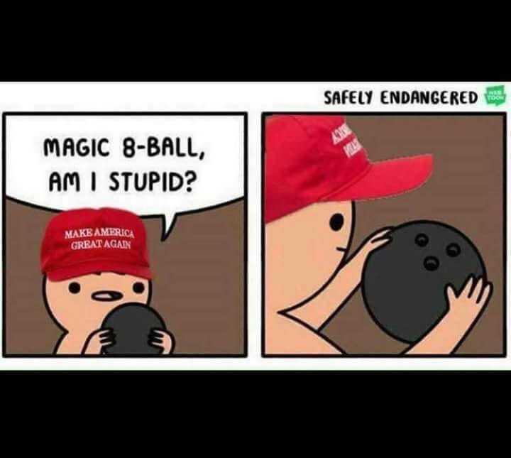 trump life like - meme