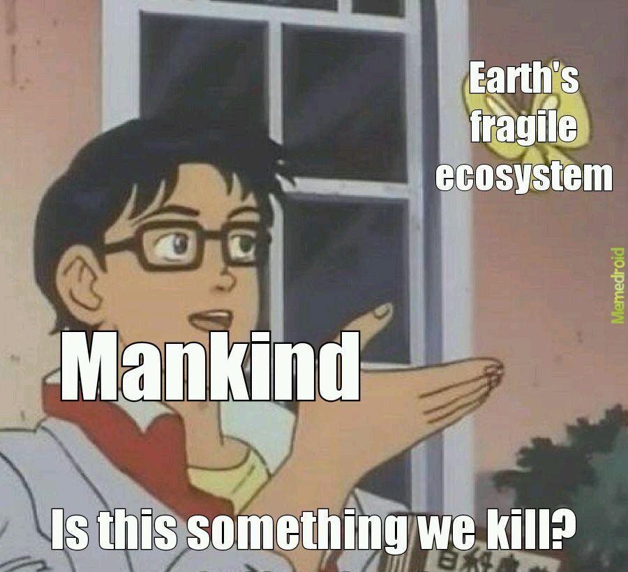 Fragile ecosystem - meme